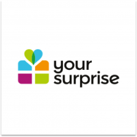 Your Surprise logo voor Exact Online Scan & Herken pagina